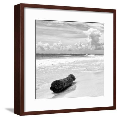 ¡Viva Mexico! Square Collection - Tree Trunk on a Caribbean Beach II-Philippe Hugonnard-Framed Art Print