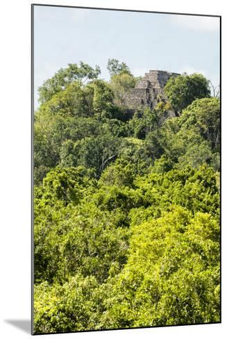 ?Viva Mexico! Collection - Ancient Maya City within the jungle III - Calakmul-Philippe Hugonnard-Mounted Photographic Print