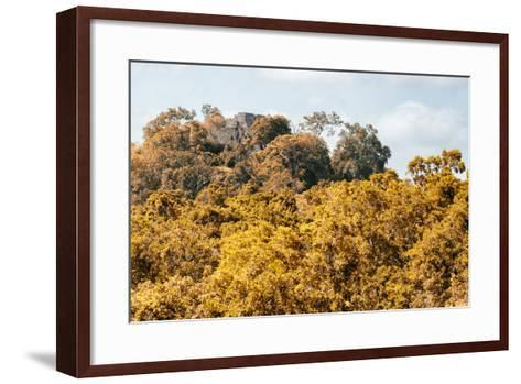 ¡Viva Mexico! Collection - Ancient Maya City within the jungle in autumn - Calakmul-Philippe Hugonnard-Framed Art Print