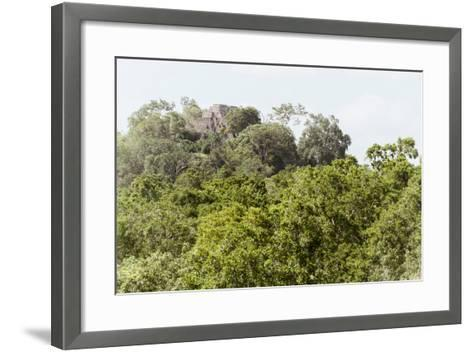 ?Viva Mexico! Collection - Ancient Maya City within the jungle II - Calakmul-Philippe Hugonnard-Framed Art Print