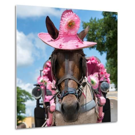 ¡Viva Mexico! Square Collection - Horse with a Pink Hat-Philippe Hugonnard-Metal Print