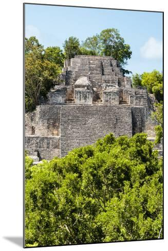 ¡Viva Mexico! Collection - Ancient Maya City within the jungle of Calakmul III-Philippe Hugonnard-Mounted Photographic Print