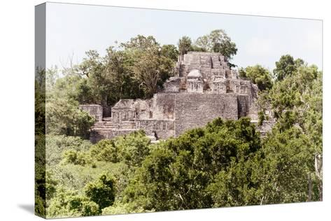 ¡Viva Mexico! Collection - Ancient Maya City within the jungle of Calakmul II-Philippe Hugonnard-Stretched Canvas Print