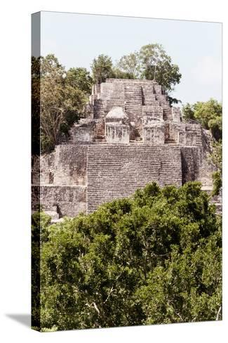 ?Viva Mexico! Collection - Ancient Maya City within the jungle of Calakmul IV-Philippe Hugonnard-Stretched Canvas Print
