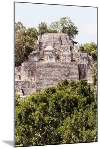 ?Viva Mexico! Collection - Ancient Maya City within the jungle of Calakmul IV-Philippe Hugonnard-Mounted Photographic Print