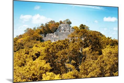 ?Viva Mexico! Collection - Ancient Maya City within the jungle in Autumn of Calakmul III-Philippe Hugonnard-Mounted Photographic Print