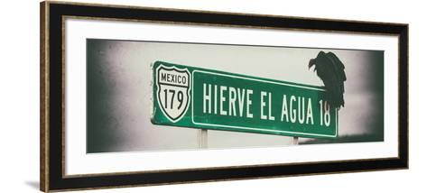 ¡Viva Mexico! Panoramic Collection - Vulture III-Philippe Hugonnard-Framed Art Print