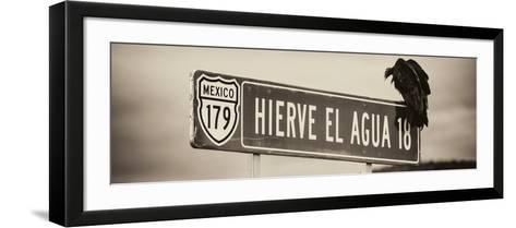 ¡Viva Mexico! Panoramic Collection - Vulture II-Philippe Hugonnard-Framed Art Print