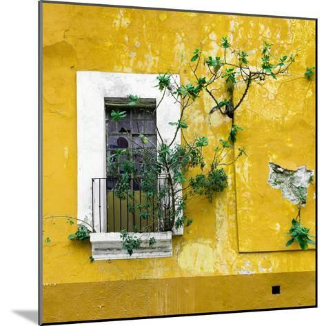 ¡Viva Mexico! Square Collection - Old Yellow Facade II-Philippe Hugonnard-Mounted Photographic Print