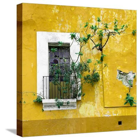 ¡Viva Mexico! Square Collection - Old Yellow Facade II-Philippe Hugonnard-Stretched Canvas Print