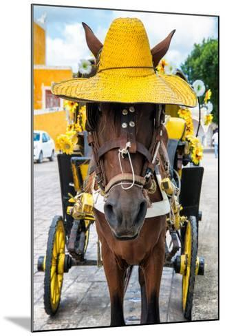 ?Viva Mexico! Collection - Horse with a straw Hat - Izamal Yellow City-Philippe Hugonnard-Mounted Photographic Print
