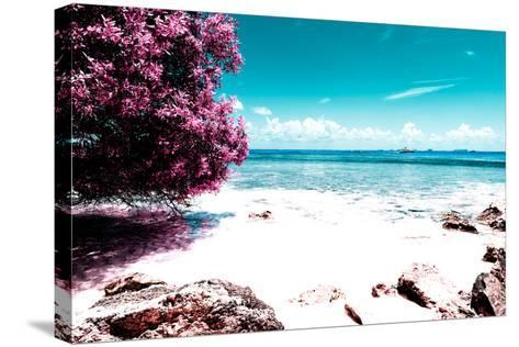 ¡Viva Mexico! Collection - Pink Caribbean Coastline - Isla Mujeres-Philippe Hugonnard-Stretched Canvas Print