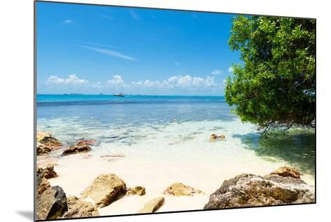 ¡Viva Mexico! Collection - Caribbean Coastline - Isla Mujeres-Philippe Hugonnard-Mounted Photographic Print