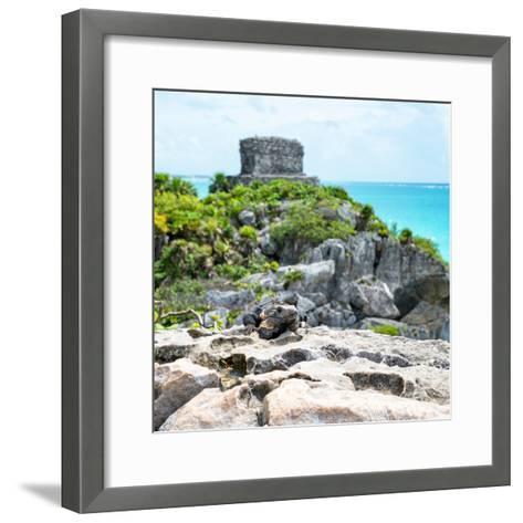 ¡Viva Mexico! Square Collection - Tulum Ruins along Caribbean Coastline with Iguana III-Philippe Hugonnard-Framed Art Print