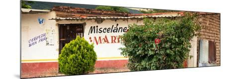 ¡Viva Mexico! Panoramic Collection - Miscelanea Mary III-Philippe Hugonnard-Mounted Photographic Print