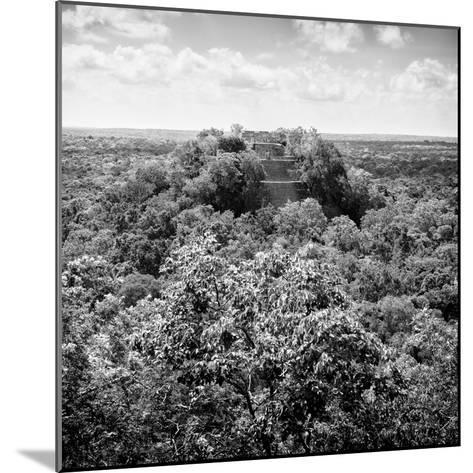 ¡Viva Mexico! Square Collection - Calakmul in the Mexican Jungle-Philippe Hugonnard-Mounted Photographic Print