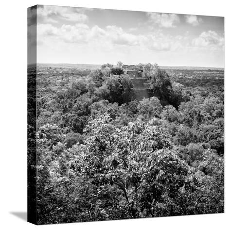 ¡Viva Mexico! Square Collection - Calakmul in the Mexican Jungle-Philippe Hugonnard-Stretched Canvas Print