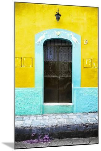 ¡Viva Mexico! Collection - 19e Door and Yellow Wall-Philippe Hugonnard-Mounted Photographic Print