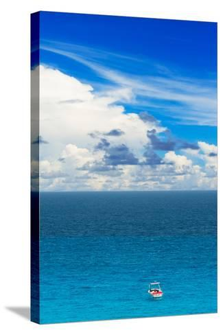¡Viva Mexico! Collection - Alone in the World III-Philippe Hugonnard-Stretched Canvas Print