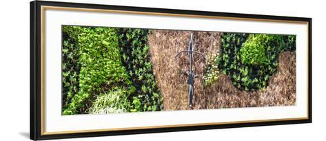 ¡Viva Mexico! Panoramic Collection - Earth from above V-Philippe Hugonnard-Framed Art Print