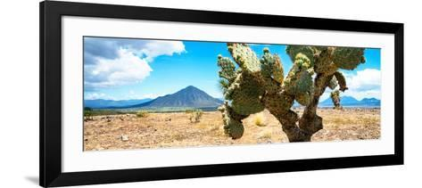 ¡Viva Mexico! Panoramic Collection - Desert Cactus II-Philippe Hugonnard-Framed Art Print