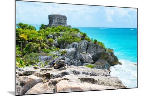 ?Viva Mexico! Collection - Mayan Archaeological Site with Iguana II - Tulum-Philippe Hugonnard-Mounted Photographic Print