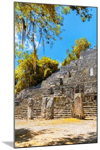 ¡Viva Mexico! Collection - Ruins of the ancient Mayan city with Fall Colors of Calakmul II-Philippe Hugonnard-Mounted Photographic Print