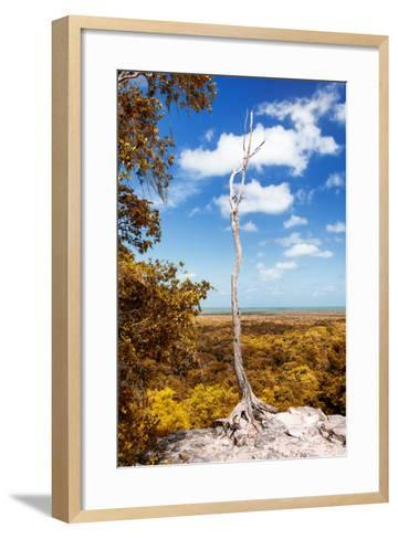 ¡Viva Mexico! Collection - Tree in the Mexican Jungle with Fall Colors - Calakmul-Philippe Hugonnard-Framed Art Print