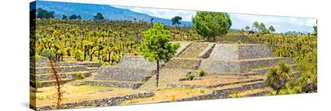 ¡Viva Mexico! Panoramic Collection - Pyramid of Cantona - Puebla IV-Philippe Hugonnard-Stretched Canvas Print