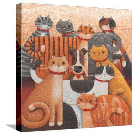 Odd One Out-Peter Adderley-Stretched Canvas Print