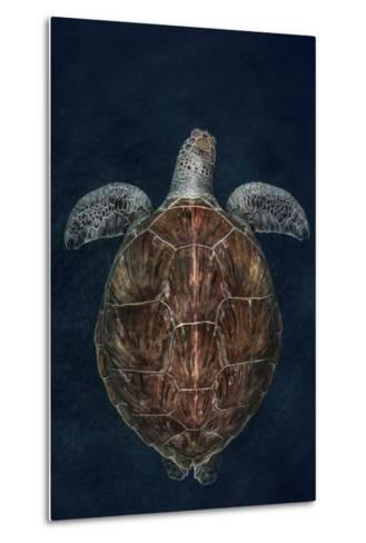 Juvenile Green Turtle (Chelonia Mydas) Armenime Cove, South Tenerife, Canary Island, Atlantic Ocean-Jordi Chias-Metal Print