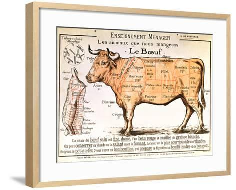Beef: Diagram Depicting the Different Cuts of Meat--Framed Art Print