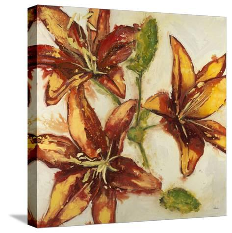 Floral Abstract-Randy Hibberd-Stretched Canvas Print
