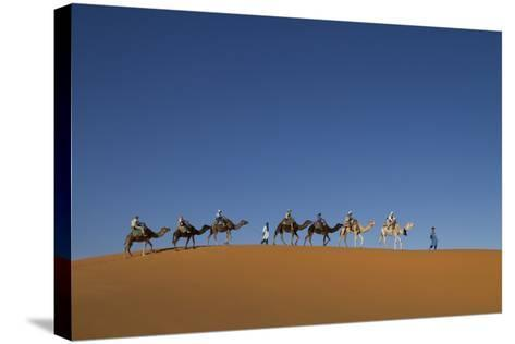Morocco, Sahara. a Row of Camels Travels the Ridge of a Sand Dune-Brenda Tharp-Stretched Canvas Print