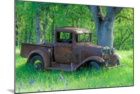 A Rusting 1931 Ford Pickup Truck Sitting in a Field under an Oak Tree-John Alves-Mounted Photographic Print