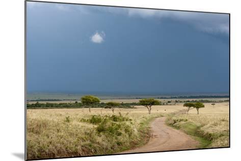 A Rainstorm Approaching in the Masai Mara Plains, Kenya-Sergio Pitamitz-Mounted Photographic Print