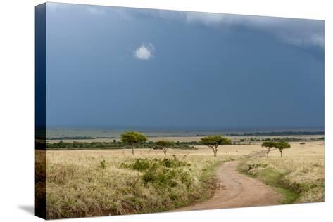 A Rainstorm Approaching in the Masai Mara Plains, Kenya-Sergio Pitamitz-Stretched Canvas Print