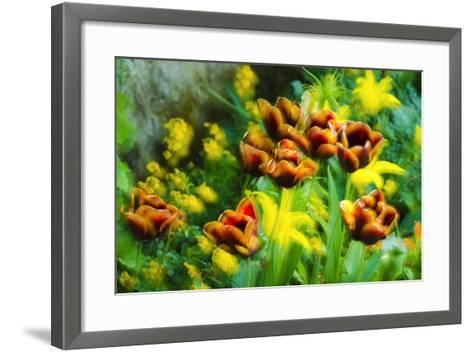 Tulips at Claude Monet House and Gardens, Giverny, France-Russ Bishop-Framed Art Print