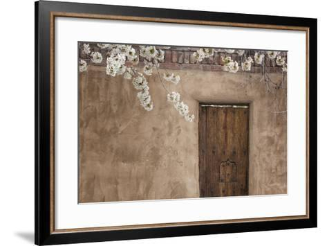 New Mexico, Santa Fe. Weathered Door to Home-Jaynes Gallery-Framed Art Print