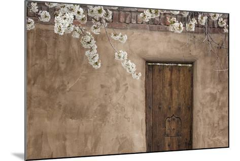 New Mexico, Santa Fe. Weathered Door to Home-Jaynes Gallery-Mounted Photographic Print