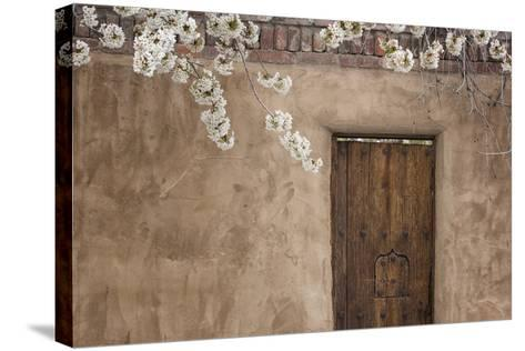 New Mexico, Santa Fe. Weathered Door to Home-Jaynes Gallery-Stretched Canvas Print