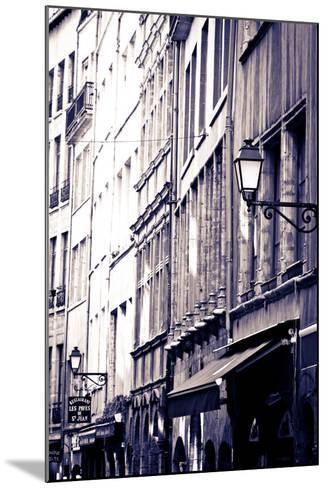 Restaurants and Galleries in Old Town Vieux Lyon, France-Russ Bishop-Mounted Photographic Print