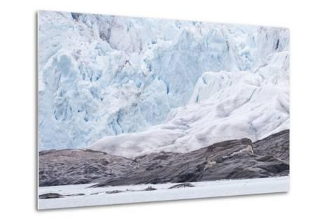 Arctic, Norway, Fourth of July Glacier, Folded Ice, Folded Ice at the Foot of the Glacier-Ellen Goff-Metal Print