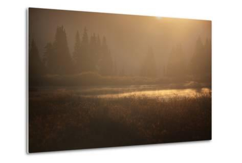 Colorado, Little Molas Lake. Mist Rises Off Wetlands at Sunrise-Jaynes Gallery-Metal Print
