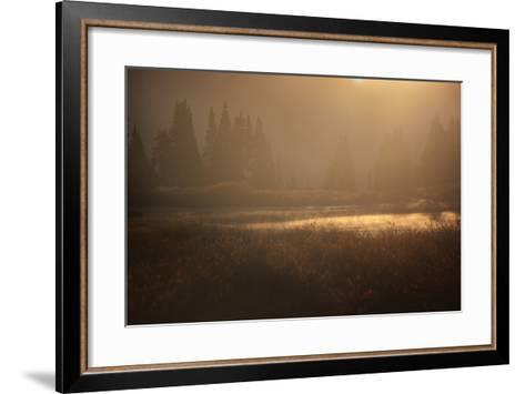 Colorado, Little Molas Lake. Mist Rises Off Wetlands at Sunrise-Jaynes Gallery-Framed Art Print