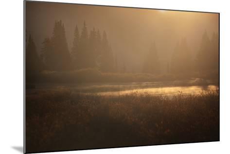 Colorado, Little Molas Lake. Mist Rises Off Wetlands at Sunrise-Jaynes Gallery-Mounted Photographic Print