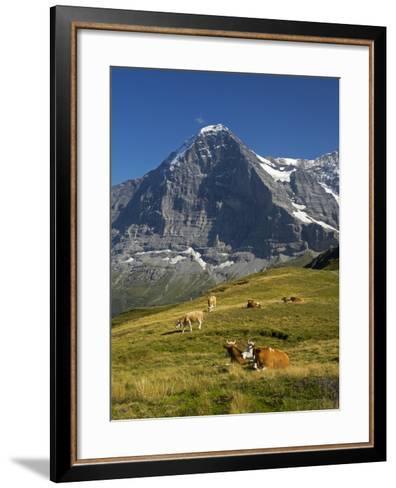 Switzerland, Bern Canton, Mannlichen Area, Swiss Cows , Background-Jamie And Judy Wild-Framed Art Print