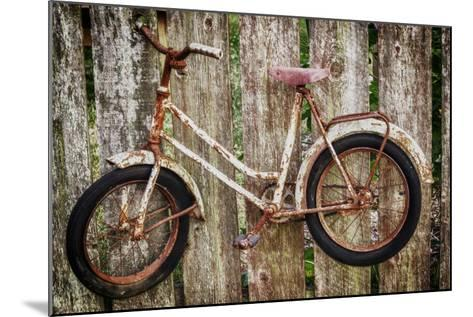 Orcas Island, Old Bicycle Hanging on Fence-Mark Williford-Mounted Photographic Print