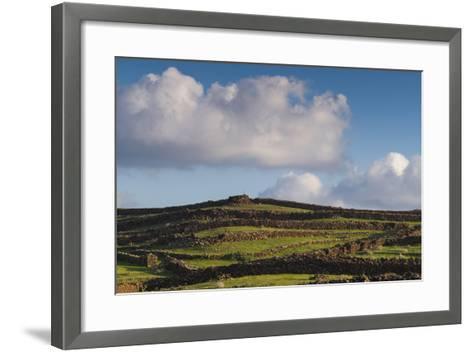 Spain, Canary Islands, Lanzarote, Guatiza, Northern Landscape-Walter Bibikow-Framed Art Print