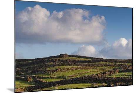 Spain, Canary Islands, Lanzarote, Guatiza, Northern Landscape-Walter Bibikow-Mounted Photographic Print